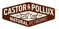 castor pollux logo